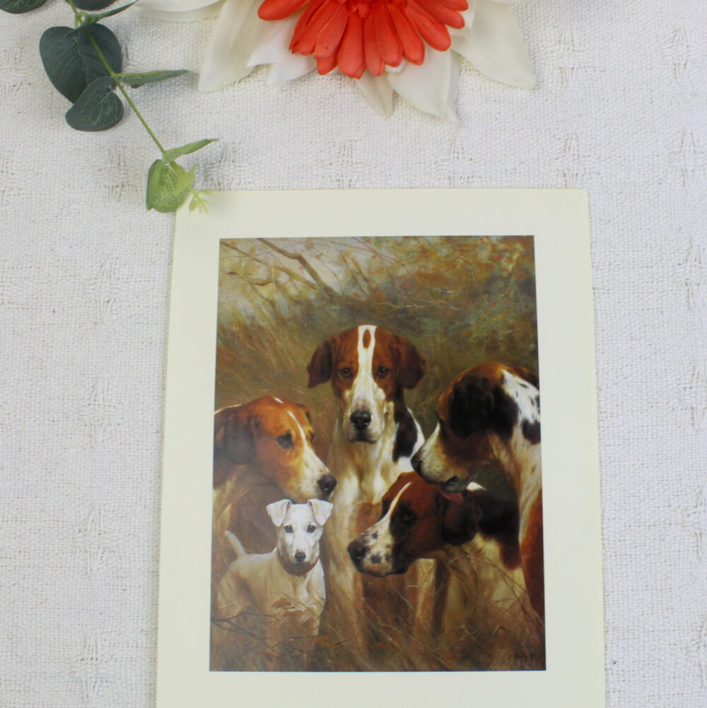 Foxhounds by Thomas Blinks