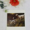 English Setters by Thomas Blinks